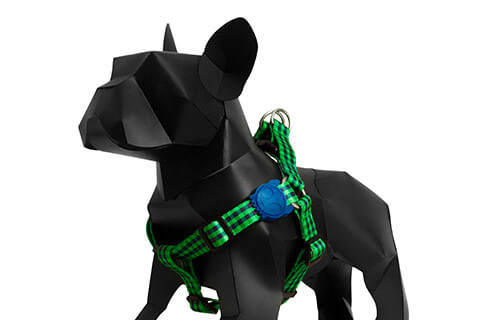 zeedog_cachorro_pet_peitoral_jack