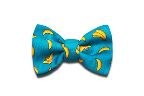 zeedog_cachorro__0060_bow_tie_banana_shake_small