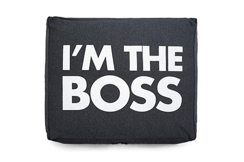 Cama-para-Cachorros-Boss