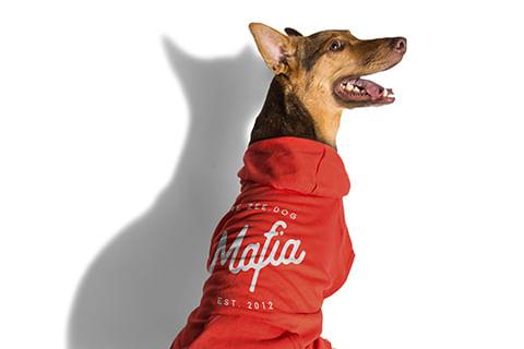 moletom-para-cachorros_vermelho_mafia_zeedog_cachorro_pet_hover