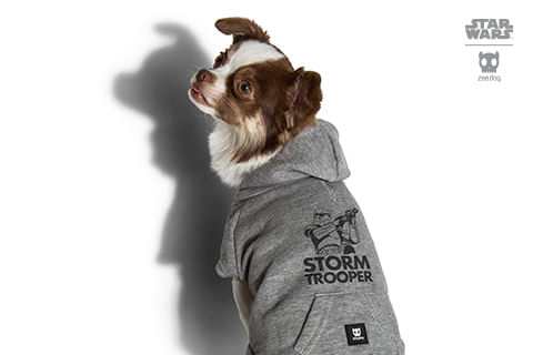 moletom-para-cachorros_star-wars_cinza_stormtrooper_zeedog_cachorro_pet_hover