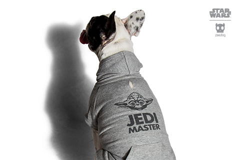 moletom-para-cachorros_star-wars_cinza_yoda_zeedog_cachorro_pet_hover