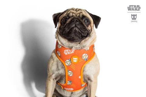 peitoral-para-cachorros_mesh-plus_star-wars_bb-8_zeedog_cachorro_pet_hover