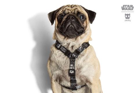 peitoral-para-cachorros-h_star-wars_stormtrooper_zeedog_cachorro_pet_hover