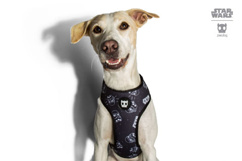 peitoral-para-cachorros_mesh-plus_star-wars_stormtrooper_zeedog_cachorro_pet_hover