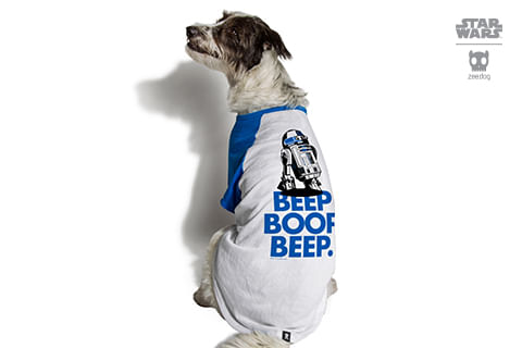 camiseta-para-cachorros_star-wars_azul_r2d2_zeedog_cachorro_pet_hover