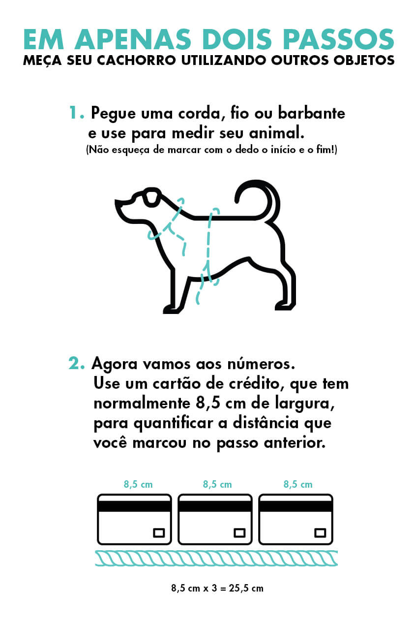 medidas alternativas cachorro