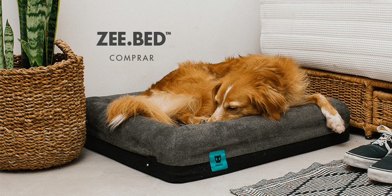 Cama Zee.Bed | Zee.Dog
