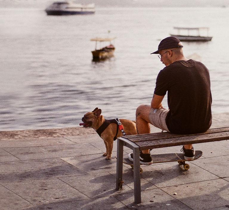 Produtos para Cachorros - Zee.Dog