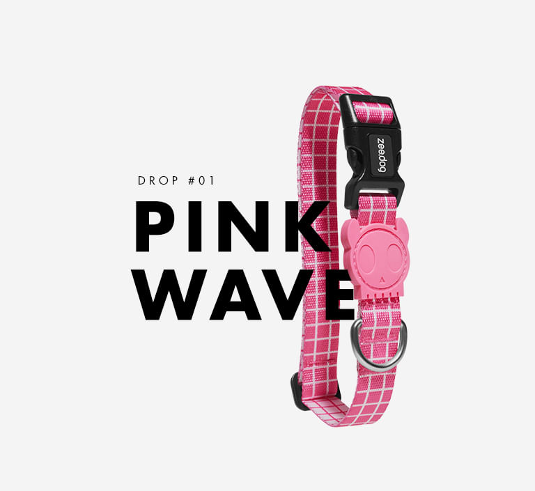 Estampa Pink Wave - Zee.Dog