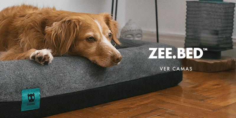 Camas | Zee.Dog