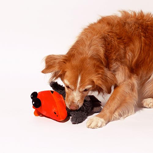 brinquedo para cachorros mutant animals