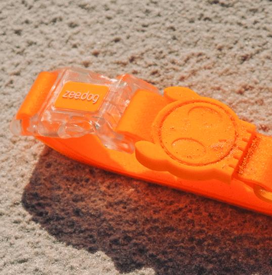 Neopro Coleira Tangerine - Zee.Dog