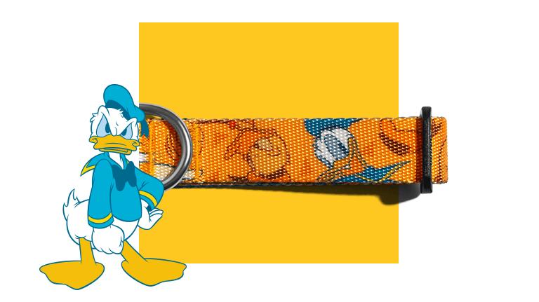 Coleira para Cachorros Donald Duck Pato Donald - Zee.Dog