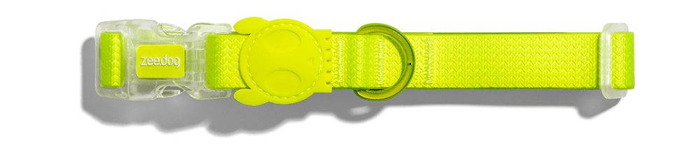 Coleira para cachorros Neopro Lime - Zee.Dog