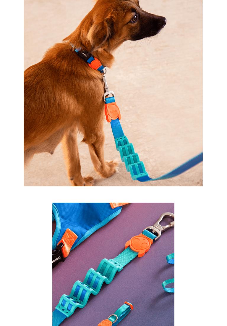 Cachorro usando a Guia com Amortecedor Gradients Tide