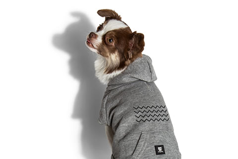moletom-para-cachorros_cinza_zigzag_zeedog_cachorro_pet_hover