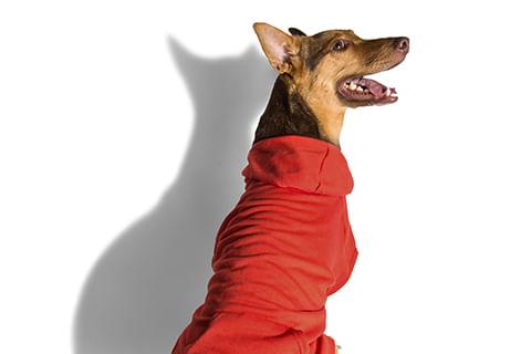 moletom-para-cachorros_vermelho_liso_zeedog_cachorro_pet_hover