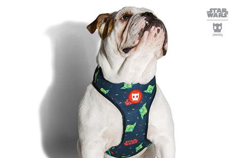 peitoral-para-cachorros_mesh-plus_star-wars_yoda_zeedog_cachorro_pet_hover