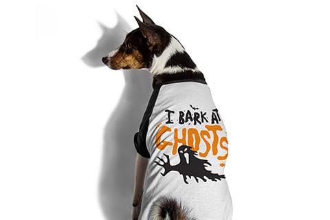 camiseta-para-cachorros_ghosts_preta_zeedog_cachorro_pet_hover