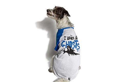 camiseta-para-cachorros_ghosts_azul_zeedog_cachorro_pet_hover