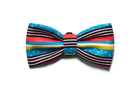gravata-para-cachorros_brooklyn_zeedog_cachorro_pet_active