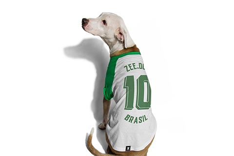camiseta-para-cachorros_brasil_verde_pet_zeedog_hover