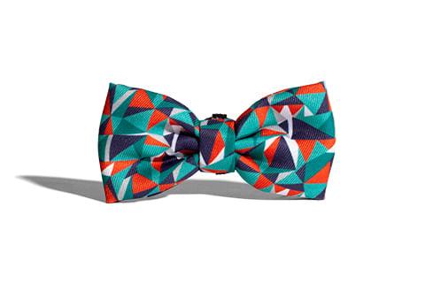 gravata-para-cachorros_ella_triangulo_geometrico_zeedog_cachorro_pet_active