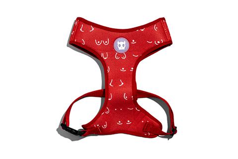 peitoral-para-cachorros-mesh-plus-donna-mulher-vermelho-zeedog-cachorro-pet-active