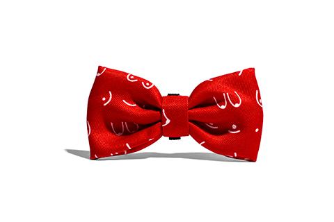 gravata-para-cachorros-donna-mulher-vermelho-zeedog-cachorro-pet-active