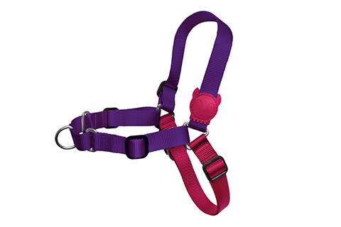 peitoral-para-cachorros-soft-walk-vega-rosa-roxo-zeedog-cachorro-pet-active