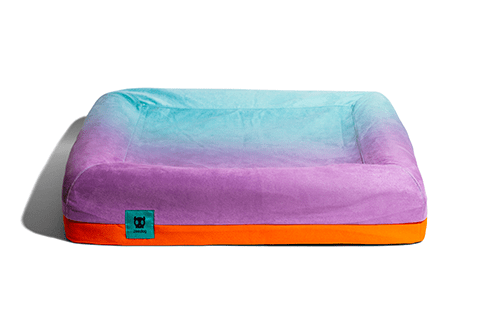 cama-para-cachorros-gradients-wave-zee-bed-zeedog-cachorro-pet-active