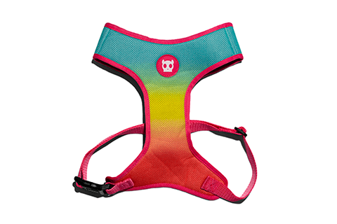 peitoral-para-cachorros-mesh-plus-gradients-citrus-zeedog-cachorro-pet-active