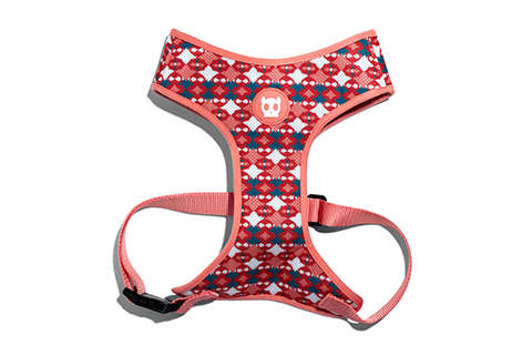peitoral-para-cachorros-mesh-plus-marrakesh-same-zeedog-cachorro-pet-active