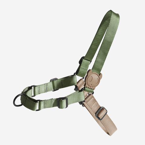 peitoral-soft-walk-cachorros-forest-verde-zeedog-pet-active