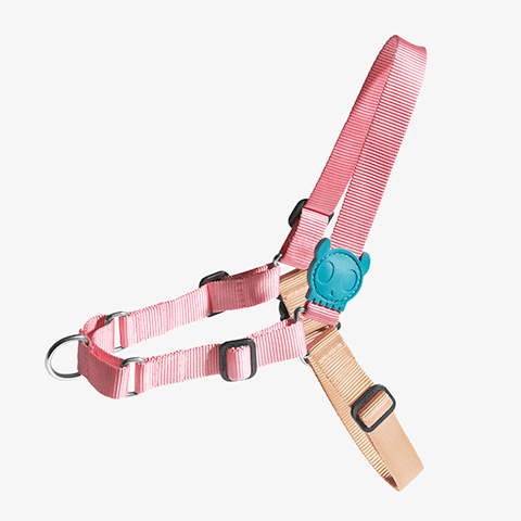 peitoral-soft-walk-cachorros-jelly-rosa-zeedog-pet-active