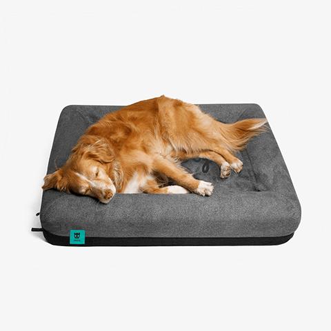 cama-para-cachorros-zee-bed-zeedog-cachorro-pet-hover
