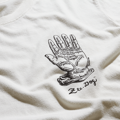 camisa-the-hand-branca-zeedog-human-hover