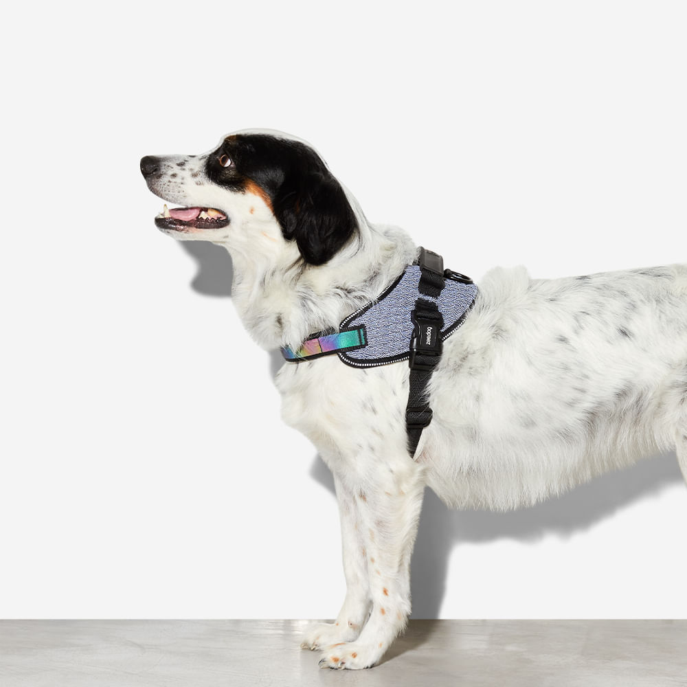 fly-harness-para-cachorros-urban-zeedog-cachorro-pet-hover