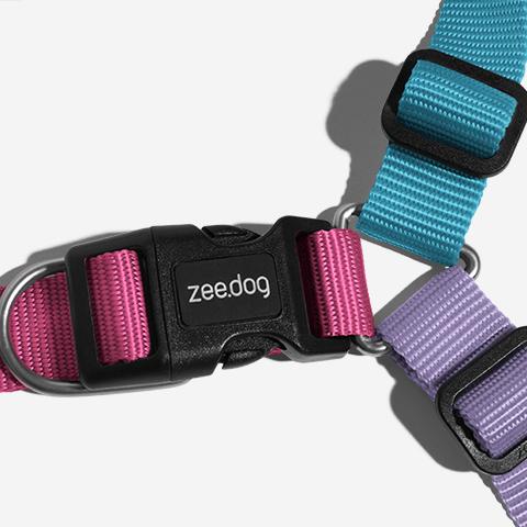 peitoral-soft-walk-cachorros-aurora-zeedog-pet-hover