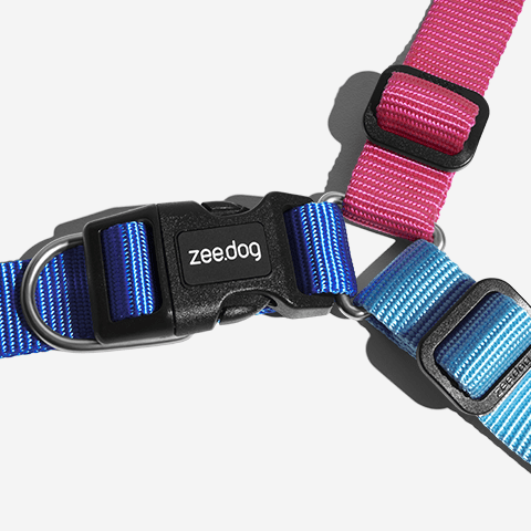 peitoral-soft-walk-cachorros-cooly-zeedog-pet-hover