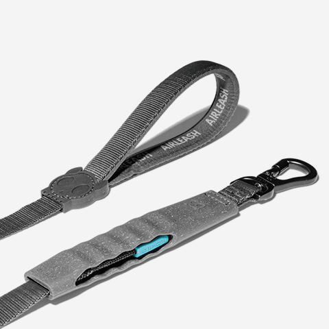 guia-air-leash-para-cachorros-carbon-zeedog-pet-active