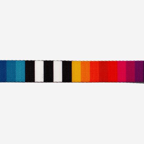 coleira-para-cachorros-prisma-colorido-arco-iris-zeedog-cachorro-hover