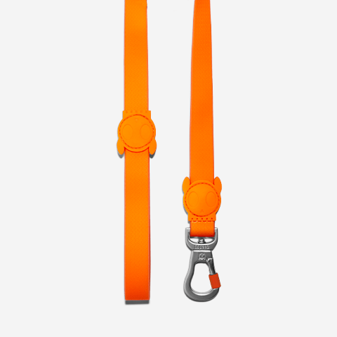 guia-para-cachorros-tangerine-laranja-neopro-zeedog-cachorro-pet-hover