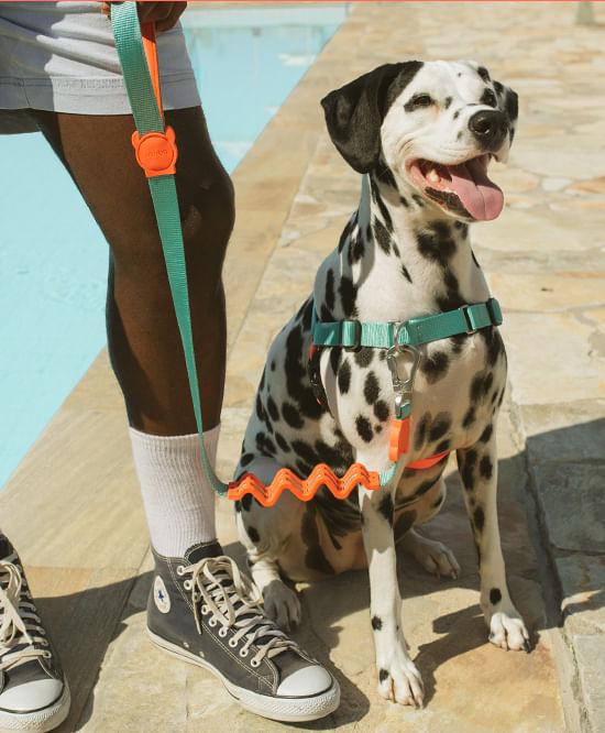 peitoral para cachorros anti-puxao twist