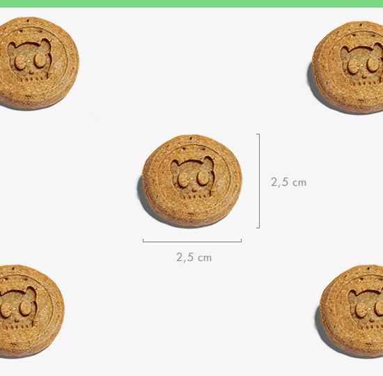 petiscos para cachorros snackz vegano cenoura e espinafre