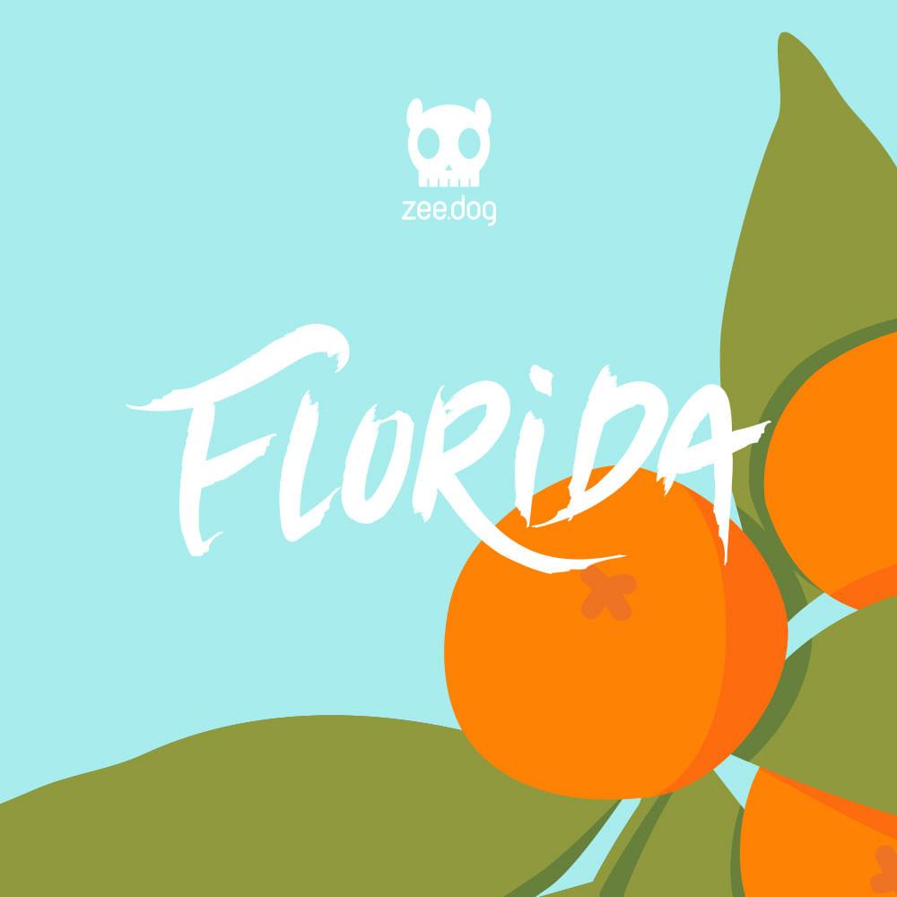 playlist spotfy florida zeedog